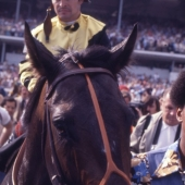 3 - Seattle Slew  1977